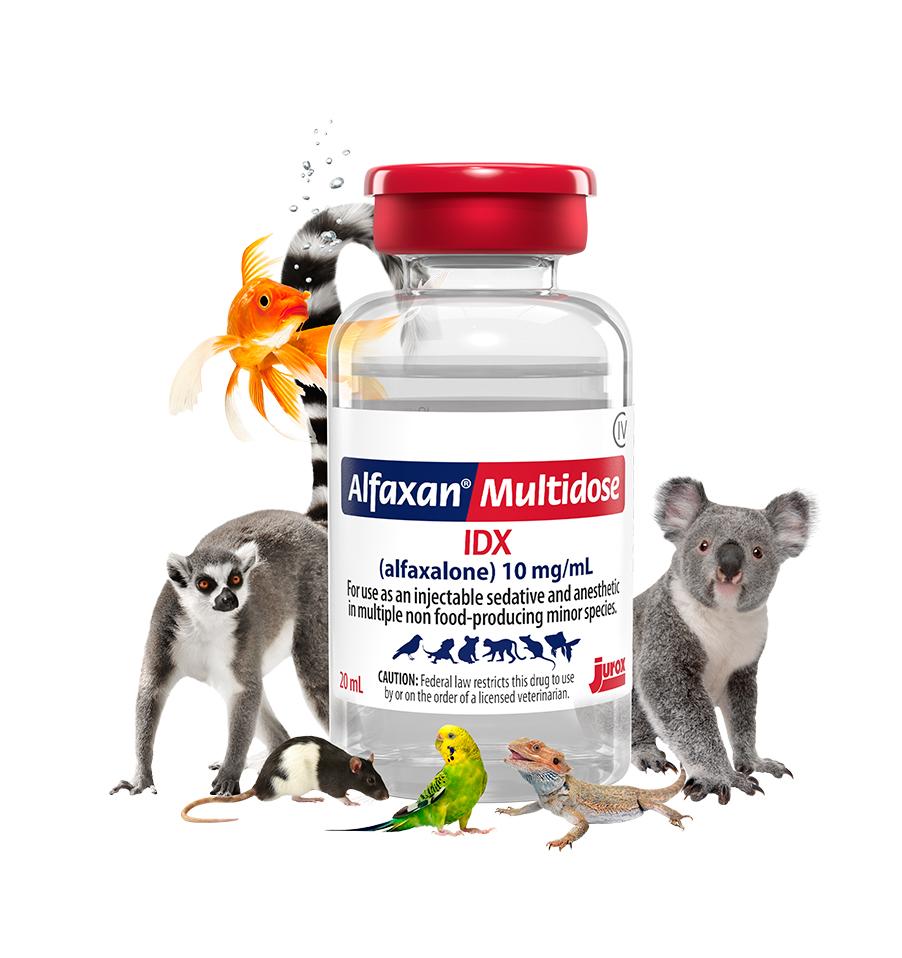 Alfaxan Multidose IDX